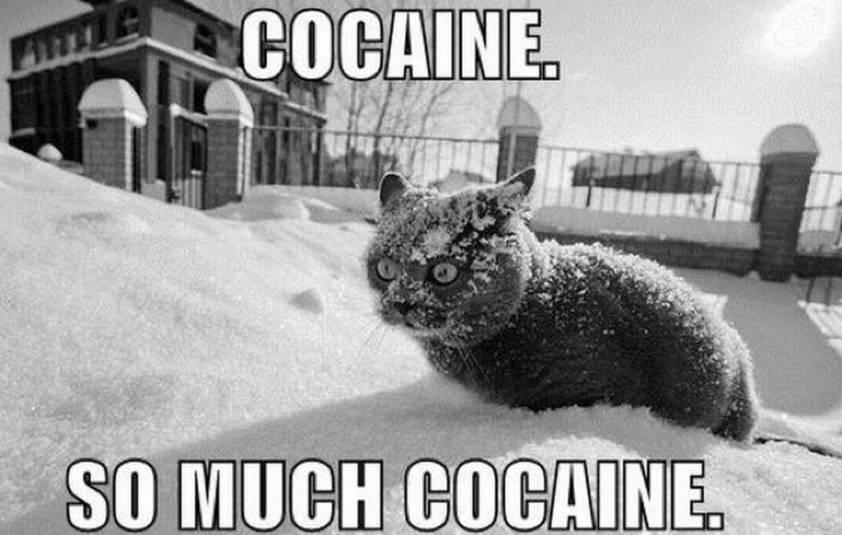 somuchcocaine