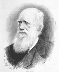 Charles_Darwin_-_Jan_Vilímek